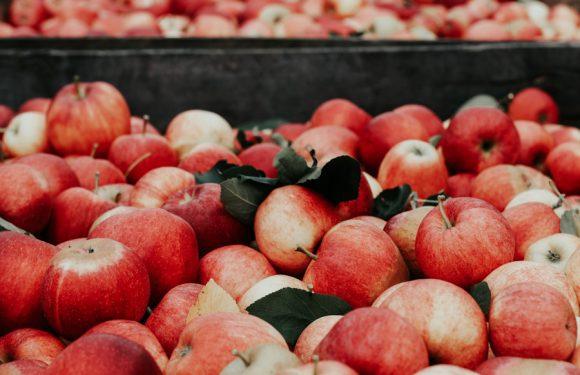 Alimentación: ¿Sabes hacer una compra saludable?
